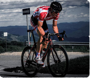 Wilier Bikes are available at Coolum Cycles